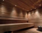 Sauna LED light SAUNA LED LIGHT MOON GOLD