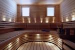 Sauna LED light SAUNA LED LIGHT SUN SILVER