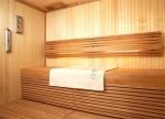 OUTLET Sauna Thermo- und Hygrometer SOLO FLÜSSIEGKEITSTHERMOMETER TYLÖ, ALUMINIUM